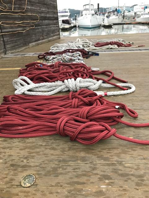 台風対策解除と係ロープについて
